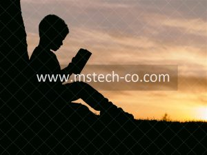 silhouette of child sitting behind tree during sunset photo