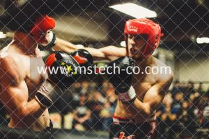 two man playing boxing photo