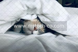 white cat sleeps under white comforter photo