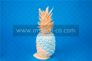 teal and orange pineapple decor photo