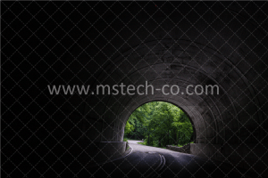 tunnel near trees at daytime photo